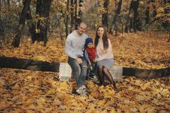 Family in a autumn park. Mother and little son sitting in a autumn forest. Woman with little child sitting in a park. Family in a autumn park. Mother and little royalty free stock photography