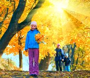 Family in autumn sunshiny maple park. Happy family (mother with small children) walking in golden maple sunshiny autumn park Stock Photo