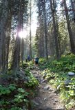 Backpacking along a trail in the Sawtooth mountains of Idaho stock photo