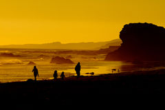 Family on beach at sunset. Scenic view of golden sunset over rocky beach with family silhouetted in foreground Royalty Free Stock Photos