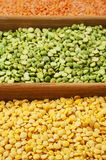 Family of beans. Yellow lentils, peas are green chipped, red lentils, chickpeas. Menu stock photo