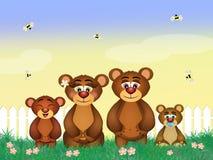 Family of bears Stock Photos