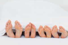 Family on the bed showing their feet Royalty Free Stock Photography
