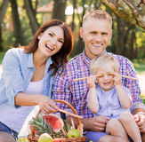 Family being together on vacation having a picnic royalty free stock photos