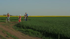 Family on bicycles. A sports family on bicycles in the countryside. Parents with children ride on bicycles. stock video