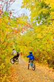 Family on bikes in autumn park, father and kids cycling. Active family sport outdoors, vertical image royalty free stock photo