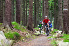 Family biking. Mother and kids biking in forest Royalty Free Stock Photo