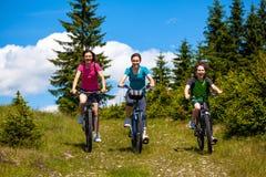Family biking Stock Image