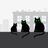 Family black cats sitting on the roof Royalty Free Stock Images