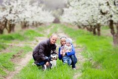 Family in blossom garden Royalty Free Stock Photos