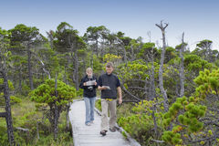 Family on Boardwalk studying Plants in a Bog Stock Images