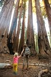 Family with boy visit Sequoia national park in California, USA.  royalty free stock image