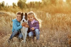 Family. Brother, sister and dog. Stock Photography