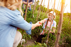Free Family Business In Garden Stock Photo - 87366230