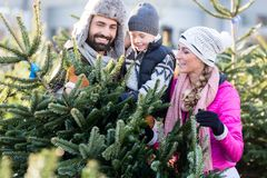 Family buying Christmas tree on market. Taking it home royalty free stock image
