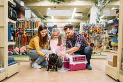 Family buying supplies for little puppy in petshop Stock Images