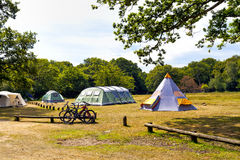 Family camping tents on a meadow near woodlands Royalty Free Stock Images