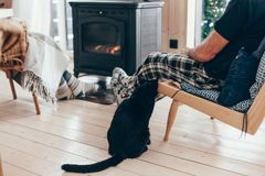 Family with cat relaxing by the fire place. Family and cat relaxing in armchair by the fire place in wooden cabin. Warm and cozy winter holiday concept royalty free stock image