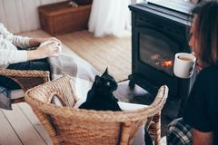 Family with cat relaxing by the fire place. Family and cat relaxing in wicker armchair by the fire place in wooden cabin. Warm and cozy winter holiday concept stock images
