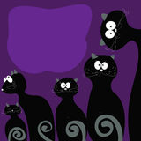 Family cats tail is black with gray on the violet background. Royalty Free Stock Photo