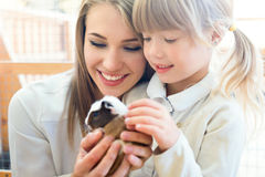 Family with cavy Royalty Free Stock Image