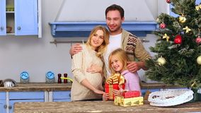 Family celebrating Christmas and New Year stock video