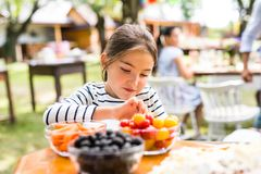 Family celebration or a garden party outside in the backyard. Family celebration outside in the backyard. Little girl standing at the table Royalty Free Stock Photos