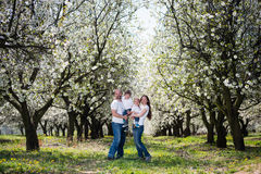Family in cherry blossom garden Royalty Free Stock Photo