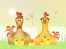 Family of chickens. Illustration of chickens in the meadow vector illustration