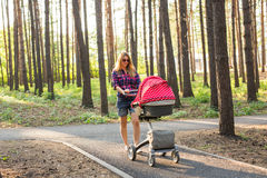 Family, child and parenthood concept - happy mother with stroller in park. Stock Images