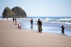 The family on bicycles and other people are resting on the pictu. A family with a child travels along the rocky Northwest Pacific coast on bicycles on the water Royalty Free Stock Photo