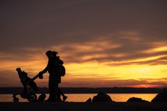Family with children and a baby in a pram or stroller silhouette Royalty Free Stock Photos
