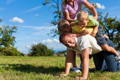 Family with children playing on a meadow. Happy family with two little boys playing in the grass on a summer meadow stock image