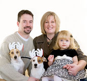 Family at Christmas. With Jack Russell Terriers Stock Photos