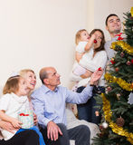 Family at the Christmas Tree Royalty Free Stock Images