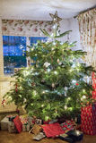 Family Christmas Tree with Presents Royalty Free Stock Photos