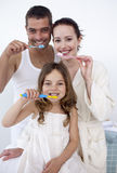 Family cleaning their teeth in bathroom. Happy family cleaning their teeth together in bathroom stock photo
