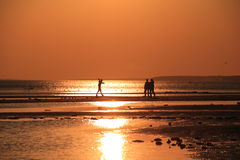 Family at coastline. Family on coastline at sunset time Royalty Free Stock Photography
