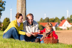 Family collecting chestnuts on bicycle trip Royalty Free Stock Photography