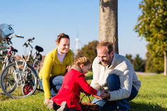 Family collecting chestnuts on bicycle trip Royalty Free Stock Photo
