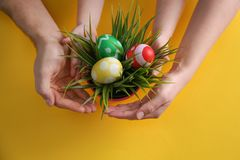 Family with composition of plant nd Easter eggs on color background. Family with composition of plant and Easter eggs on color background, top view stock photography