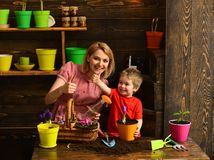 Family concept. Happy family smile with thimbs up hands. Family planting flowers at home. Little child help mother to. Care for plants, family. All things grow stock image