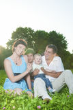 Family Concepts. Young Caucasian Family of Four People Posing Together Outdoors in Park. Sitting Embraced.Vertical Image Stock Images