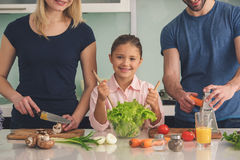 Family Cooking Meal Food Preparation Together Indoor stock image