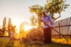 Family couple of farmers gather hay with pitchfork at sunset in countryside. Hard-working people chat. Agriculture and farming concept royalty free stock photos