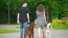 Family couple with pets dogs walking in park - man and woman walks with irish setter and husky