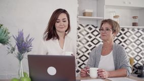 Family couple of senior woman and granddaughter is sitting and talking by laptop online conference. stock video