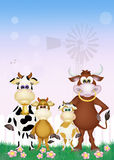 Family cows in the farm Royalty Free Stock Image