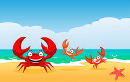 Family of crabs. At the sea Royalty Free Stock Photography