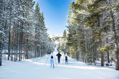 Family cross-country skiing in Breckenridge. Breckenridge, Colorado/ USA-December 25 2018. Family cross-country skiing in Breckenridge Nordic Center. People royalty free stock photo